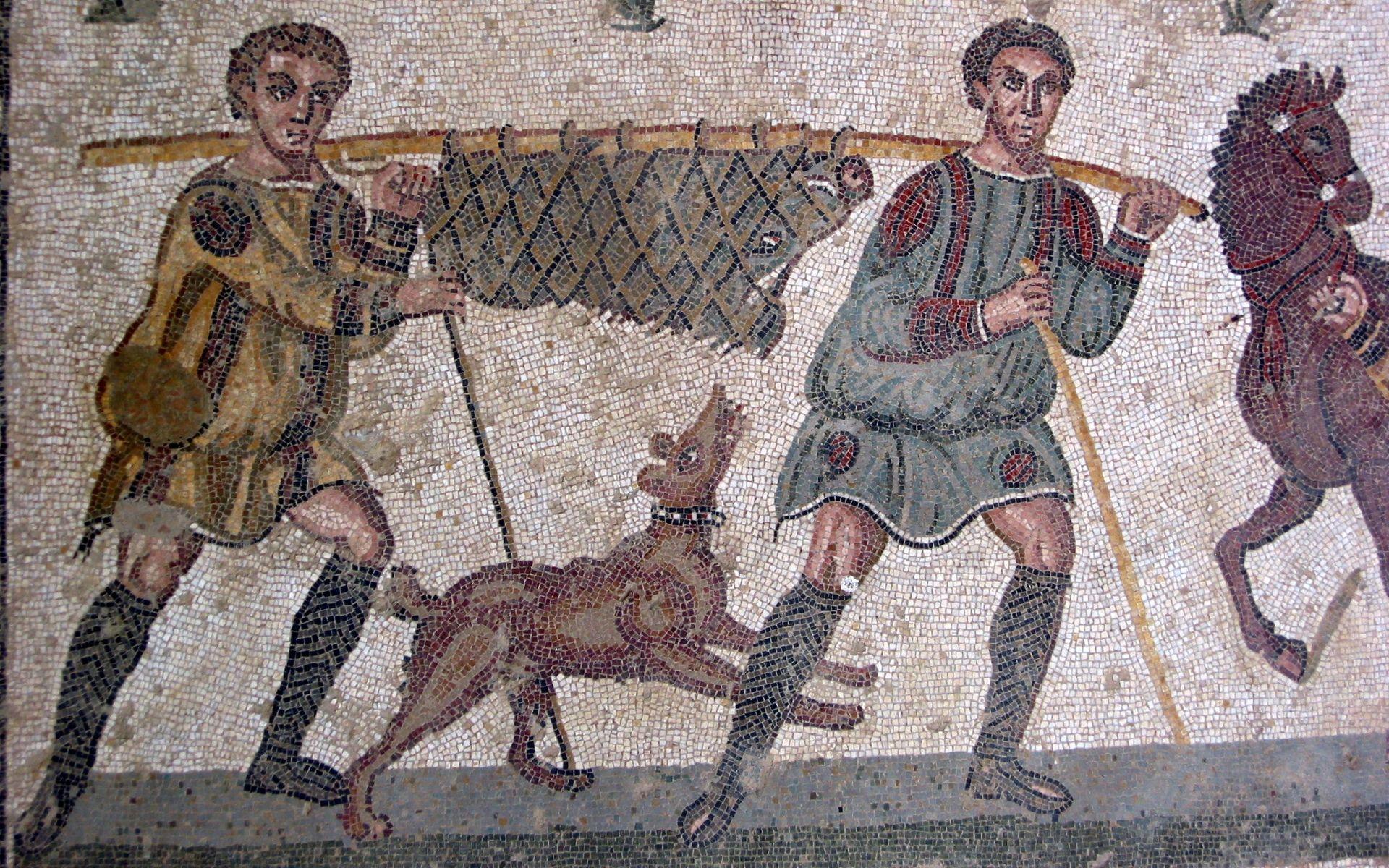 Археологи нашли у палеолитических людей эмоциональную привязанность к собакам