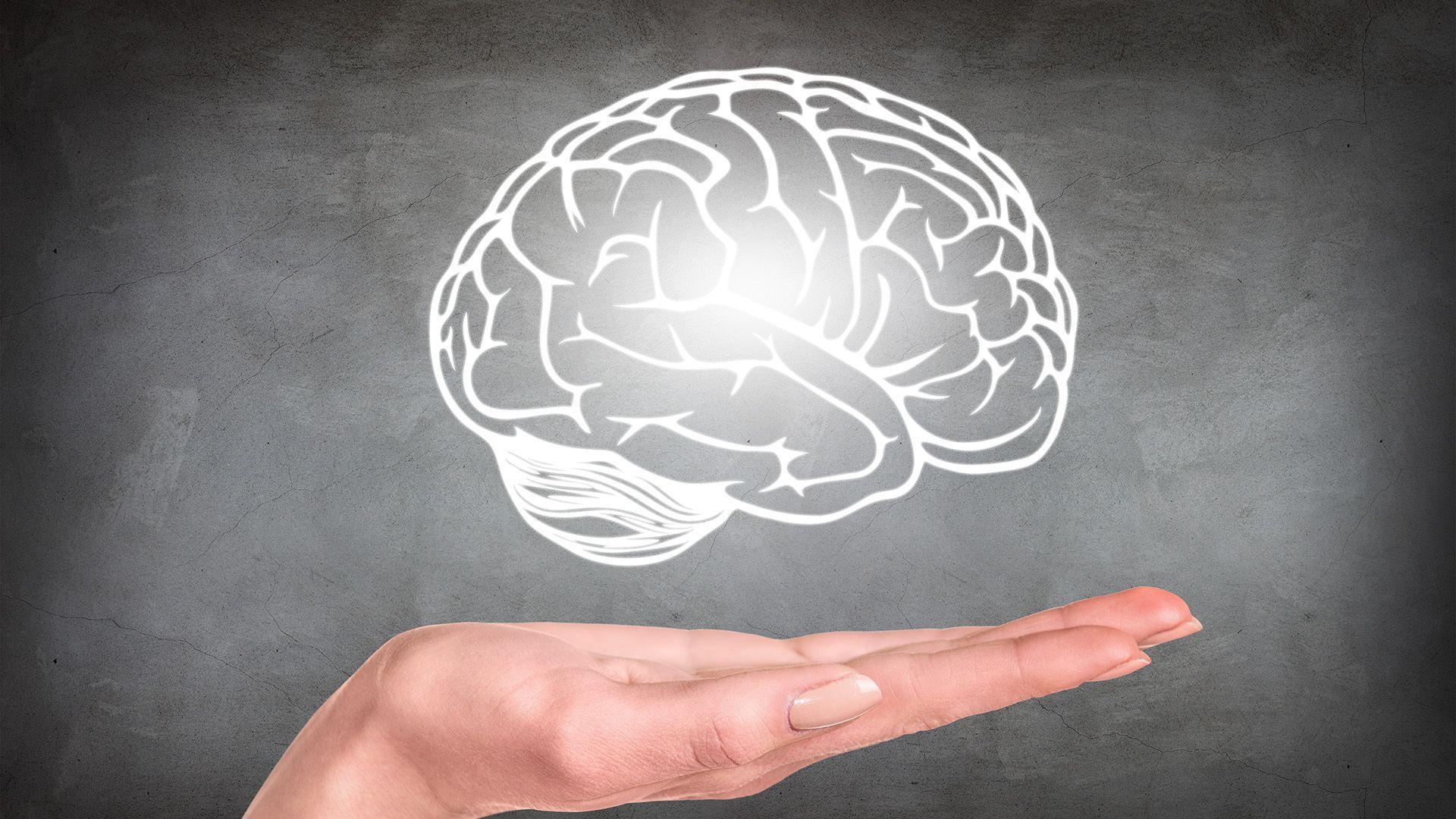 что мы узнали о мозге за 120 лет