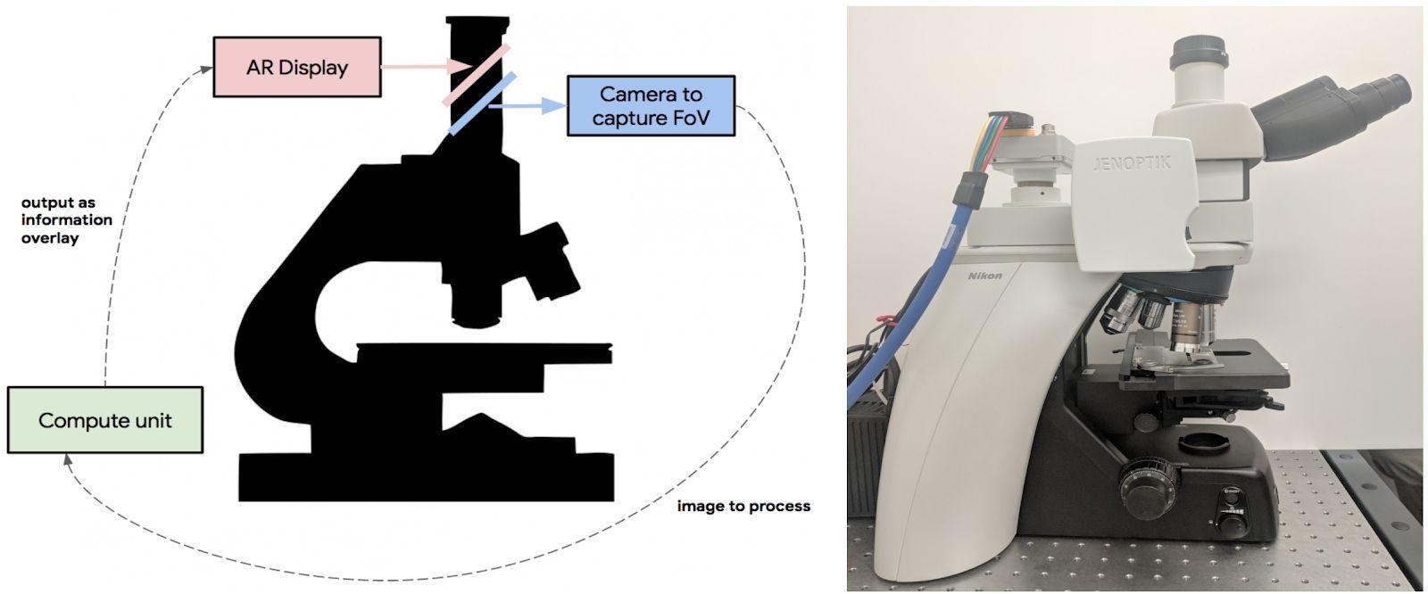 Микроскоп от Google обнаружит рак