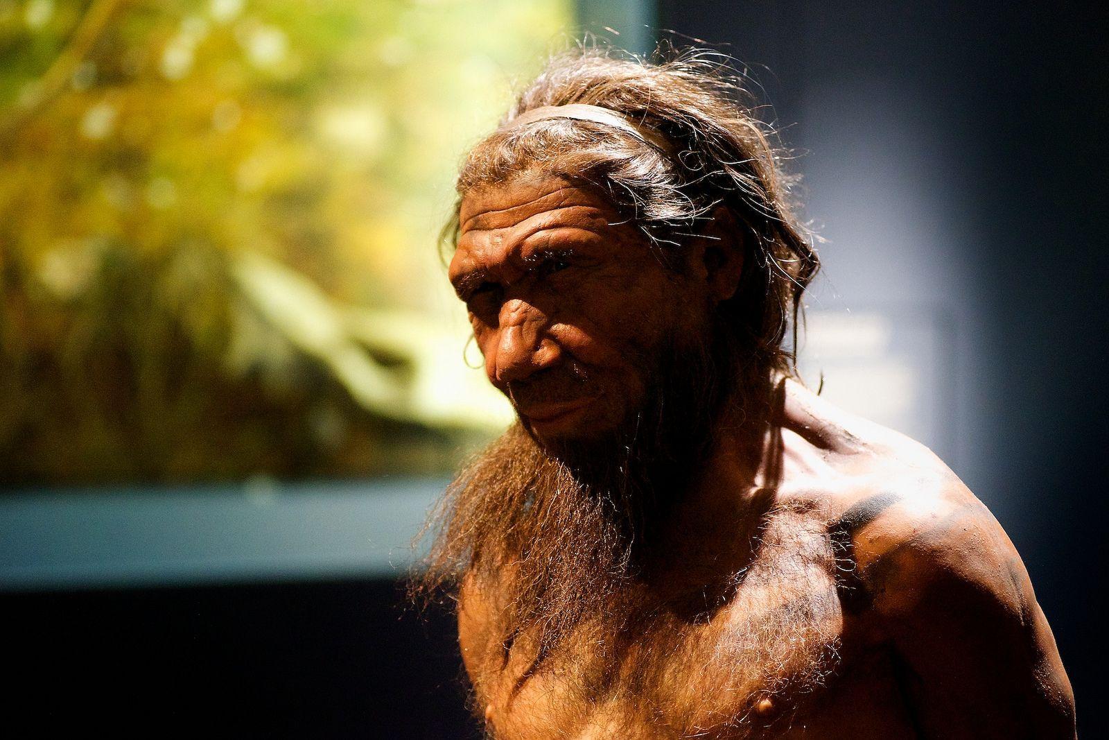 Неандертальцам помогало выживать чувство сострадания