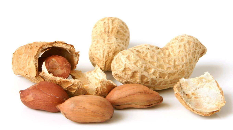 Создана вакцина от аллергии на арахис