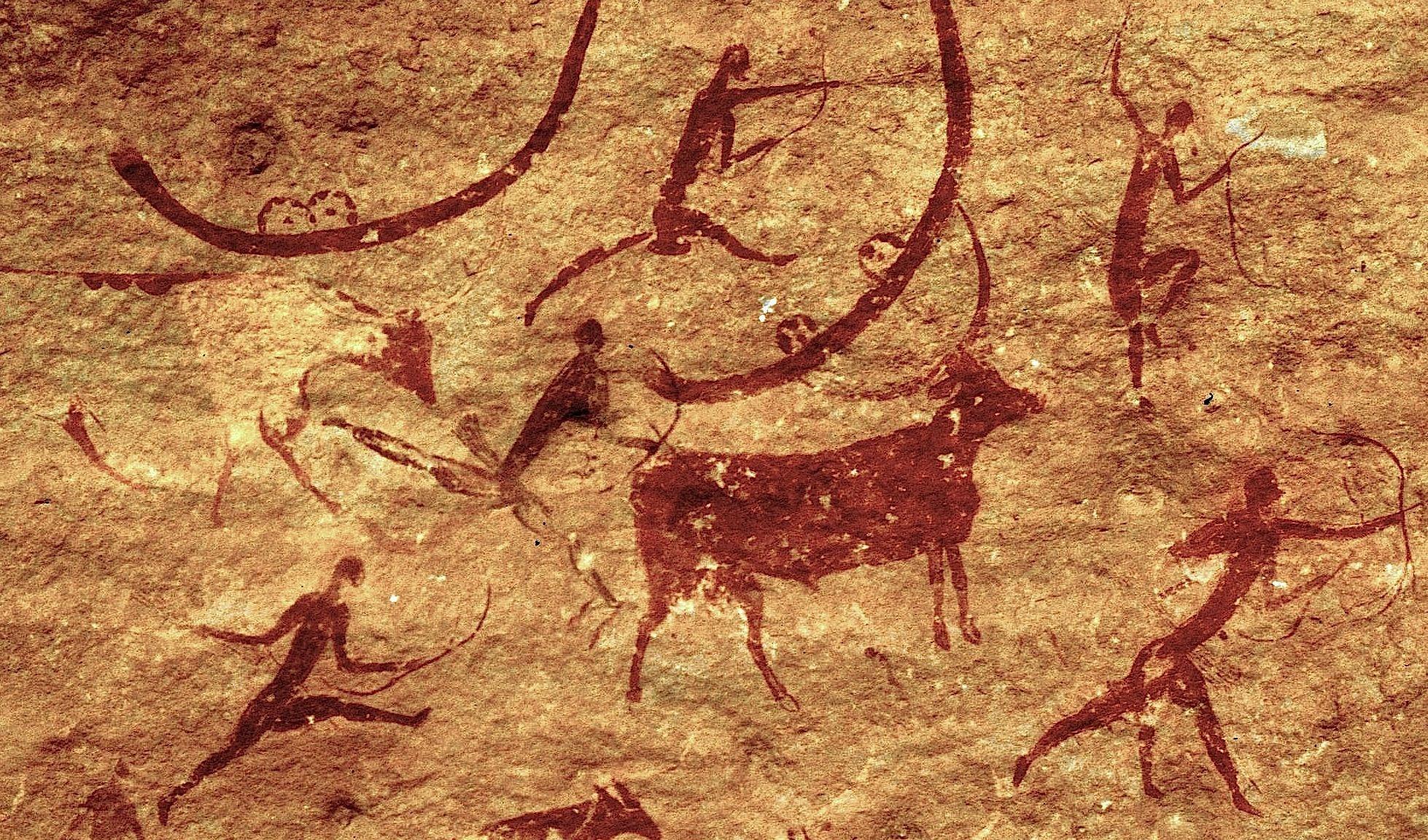 В вымирании крупных наземных млекопитающих обвинили людей
