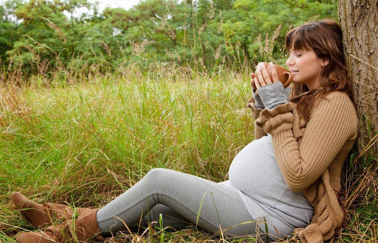 При беременности три чашки чая в день несут опасность