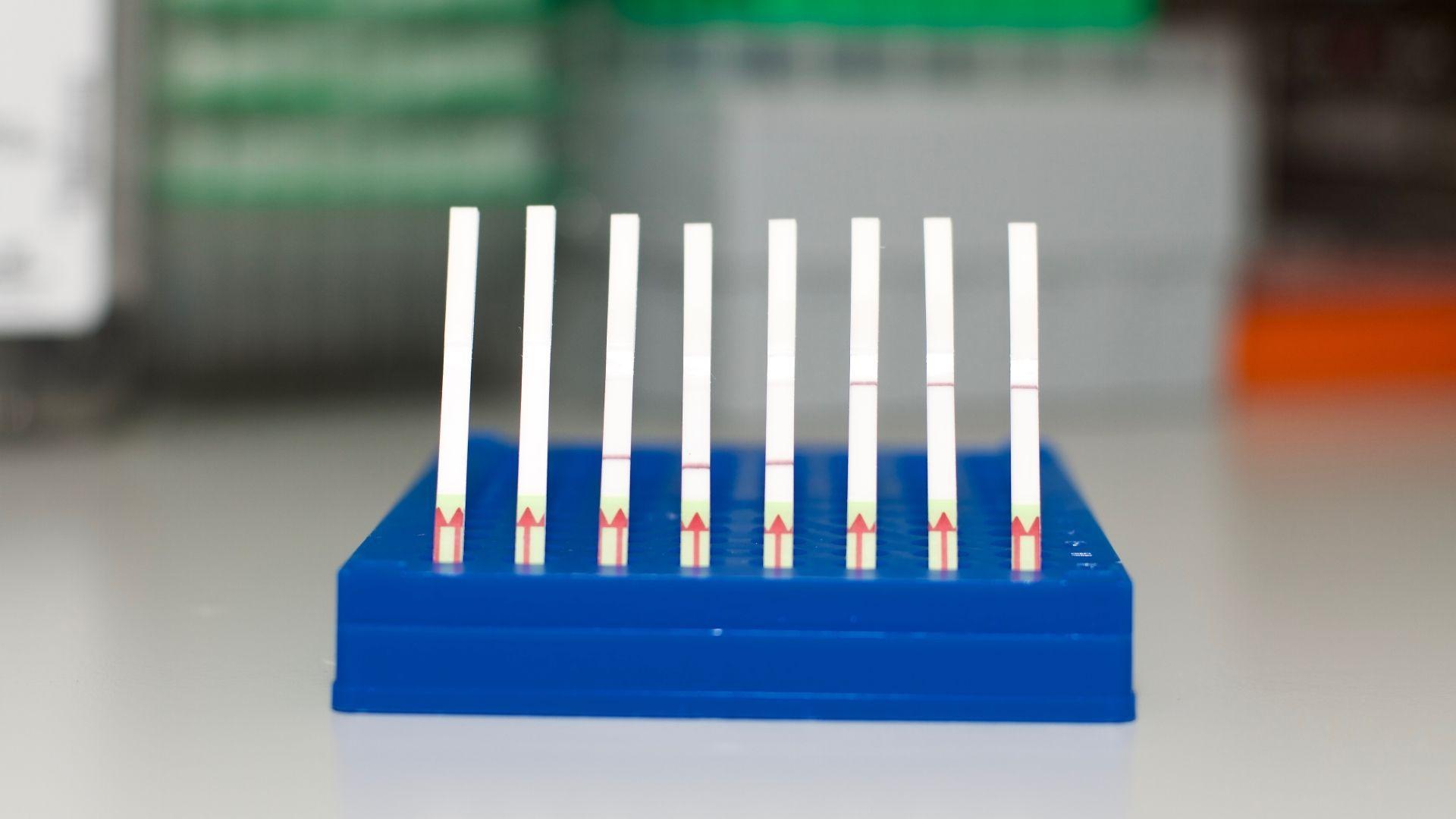 Инструментарий CRISPR овладел тремя новыми трюками
