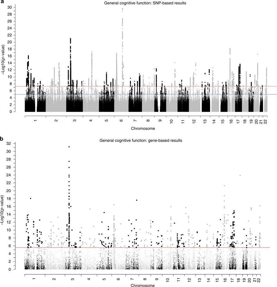 Генетики связали уровень интеллекта с патологиями зрения и болезнями сердца