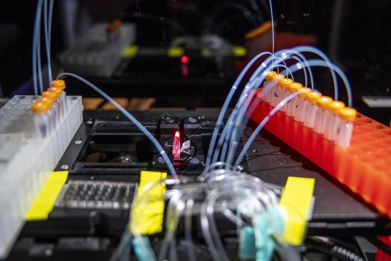Новый метод ДНК-печати