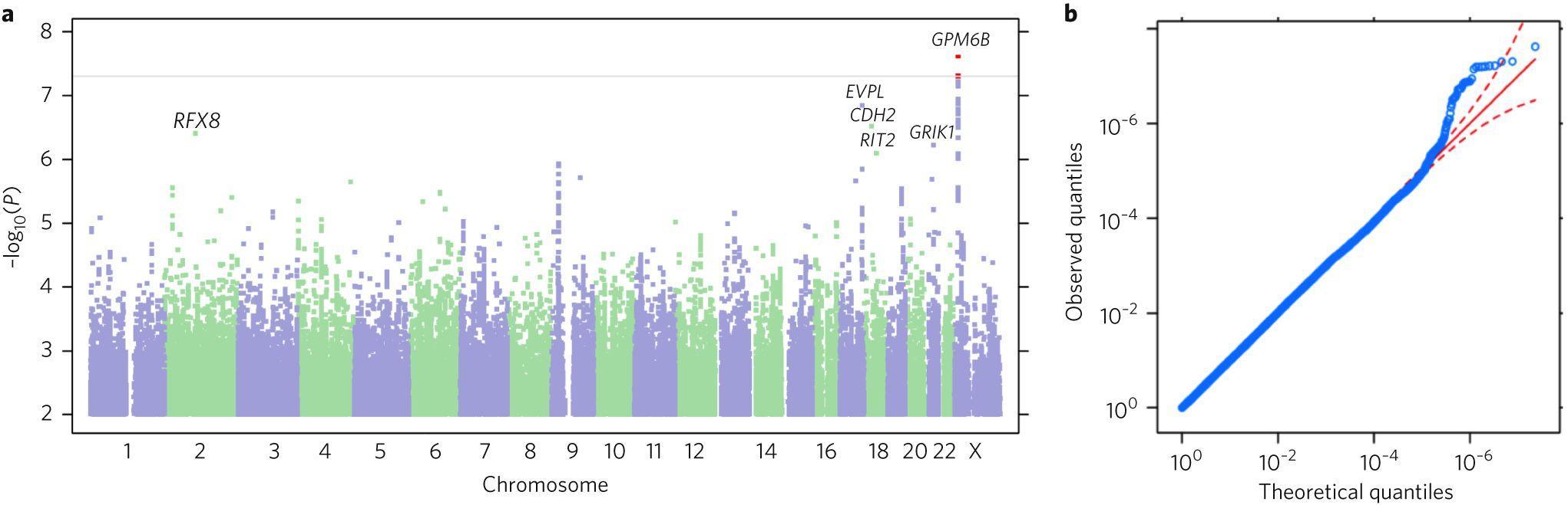 Ученые обнаружили генетические маркеры предрасположенности к немедленным наградам