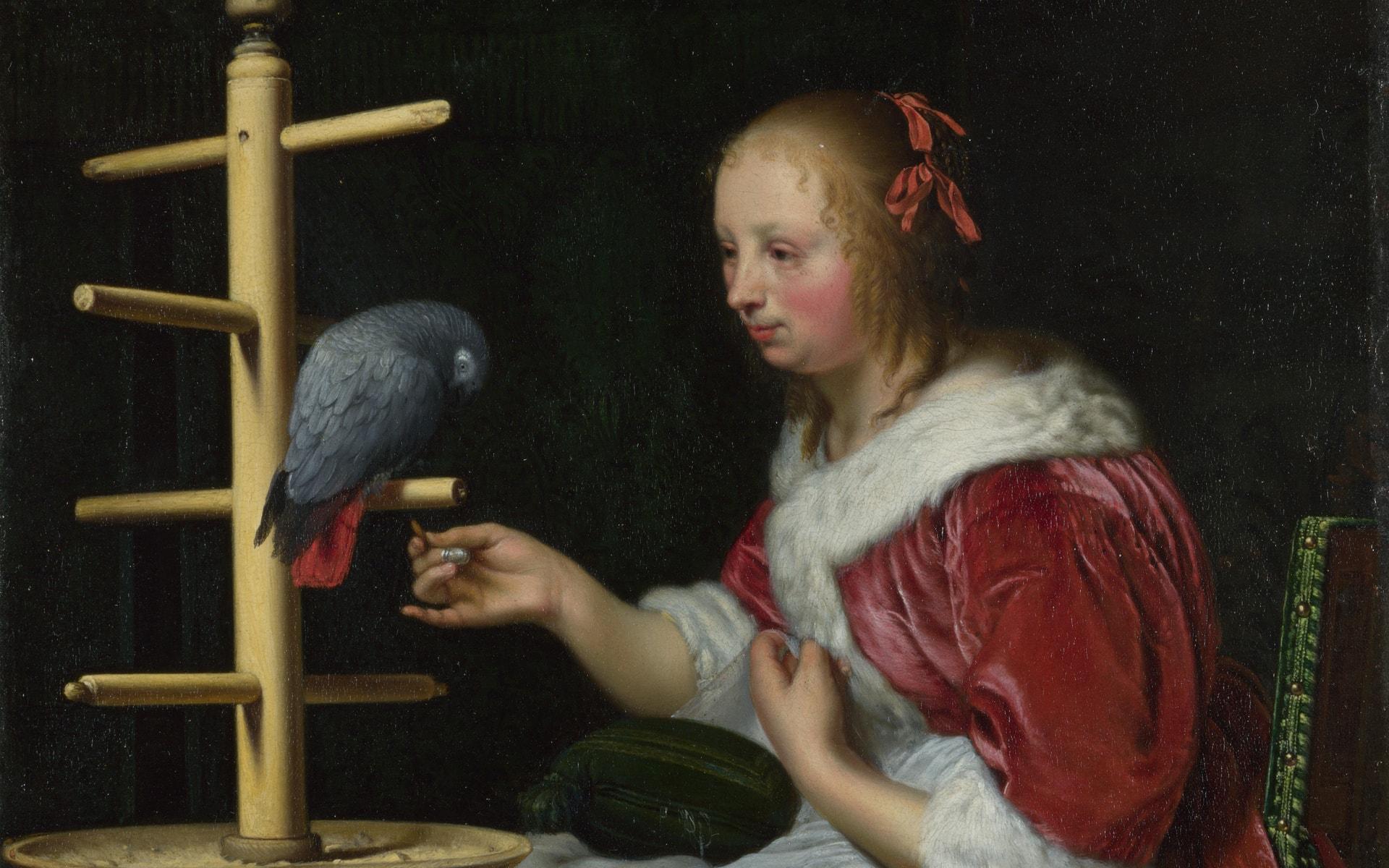 Поиски души внутри попугая