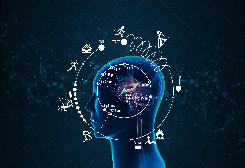 Как мозг осознаёт время?