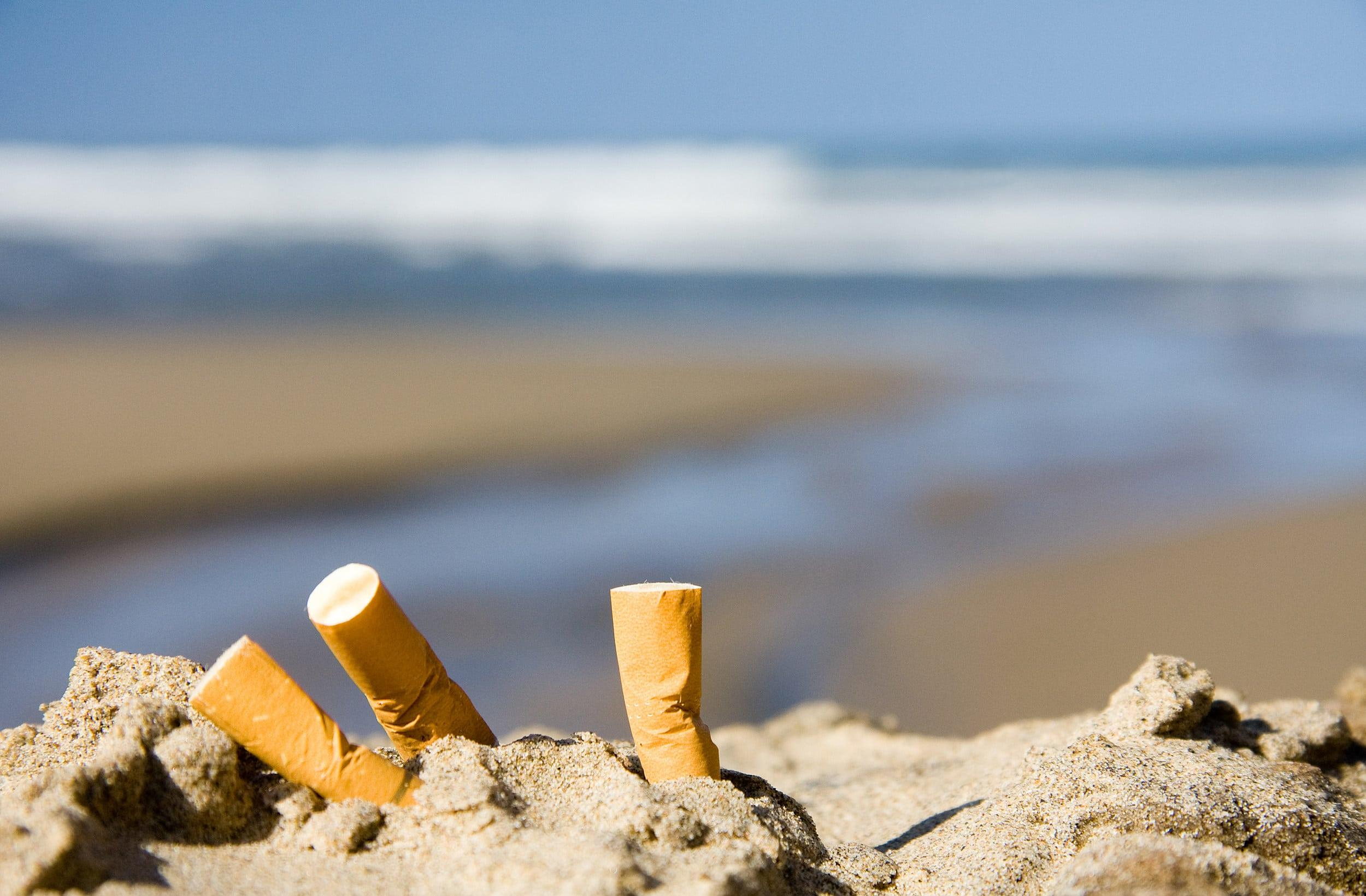 Какого вида мусора больше всего в мировом океане?