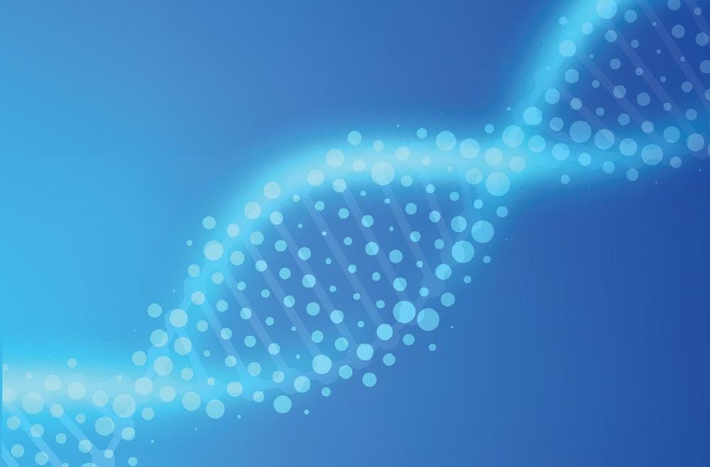 Пренатальное редактирование генов спасло эмбрионы от смертельного заболевания