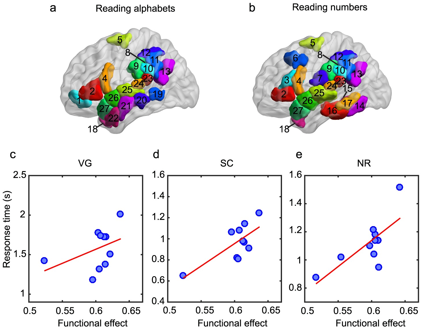 Индивидуальные модели связей в мозге помогут понять разницу между людьми