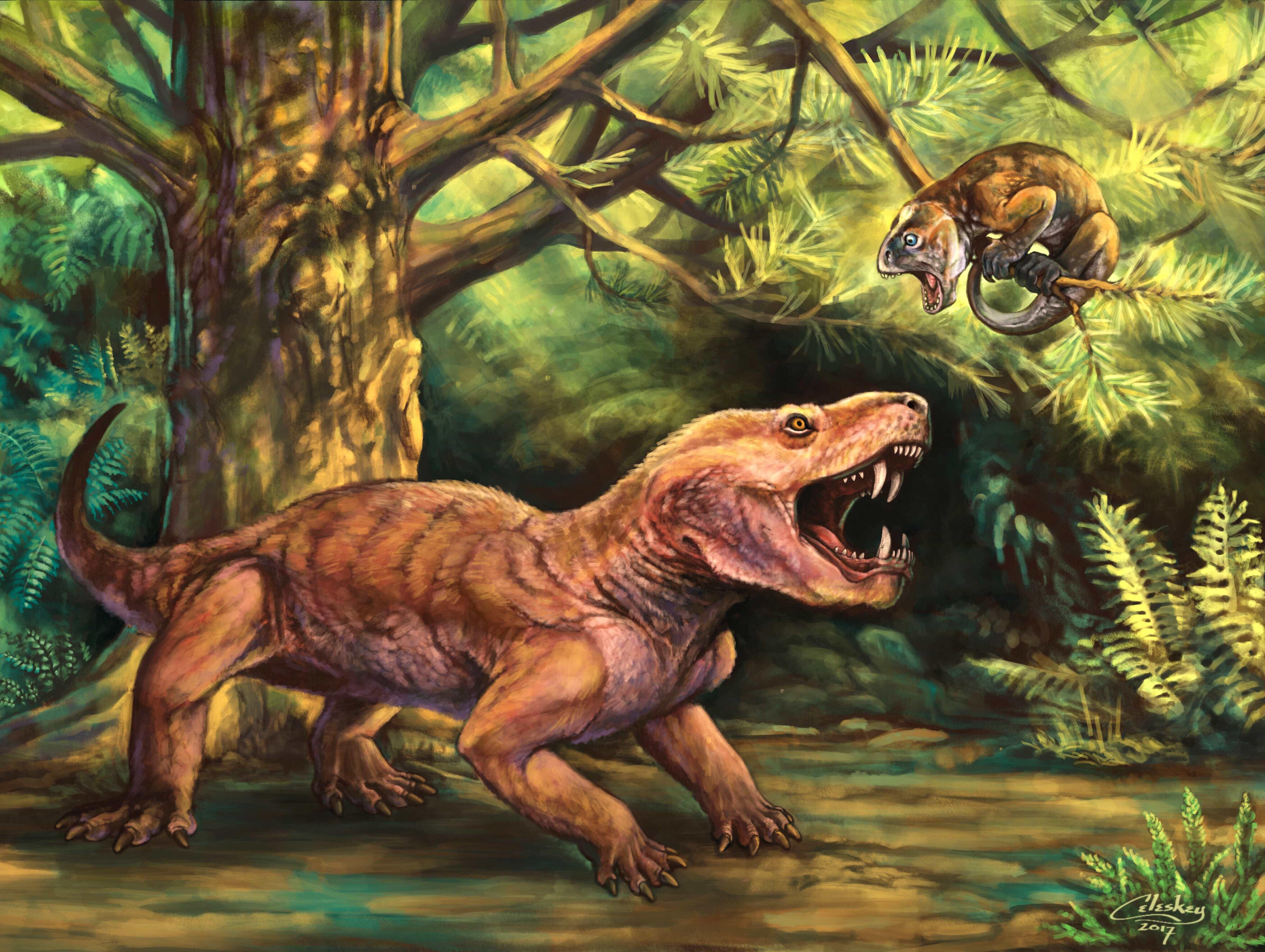 Историю ранних предков млекопитающих дополнили «Горыныч» и «ночница» из России