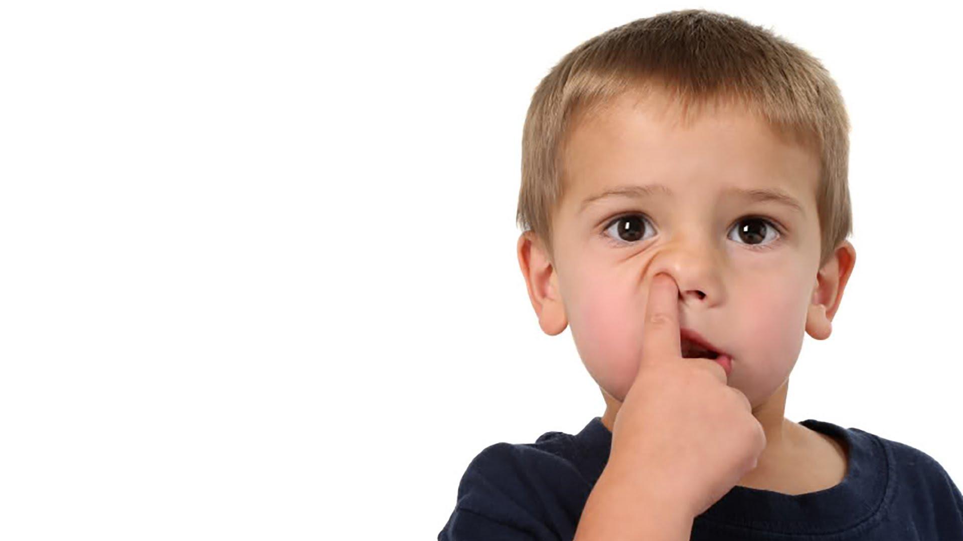 Против ковыряния в носу нашелся серьезный научный довод