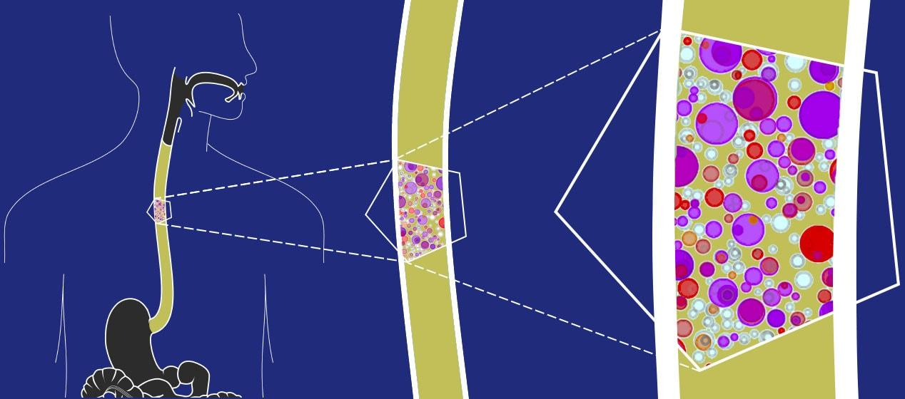 Мутанты уже среди нас: организмы здоровых людей населяют огромные колонии «изменённых» клеток