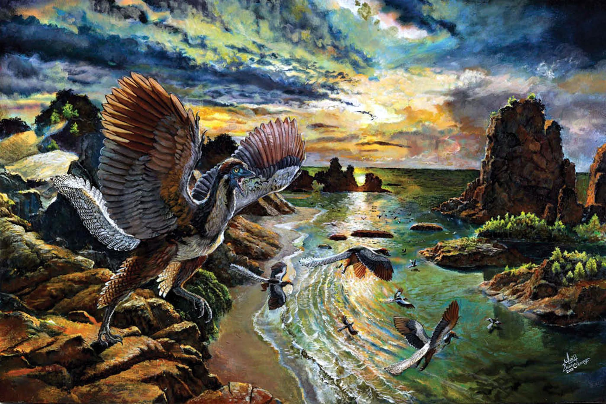 Уже почти птица? Обнаружен уникальный вид археоптериксов