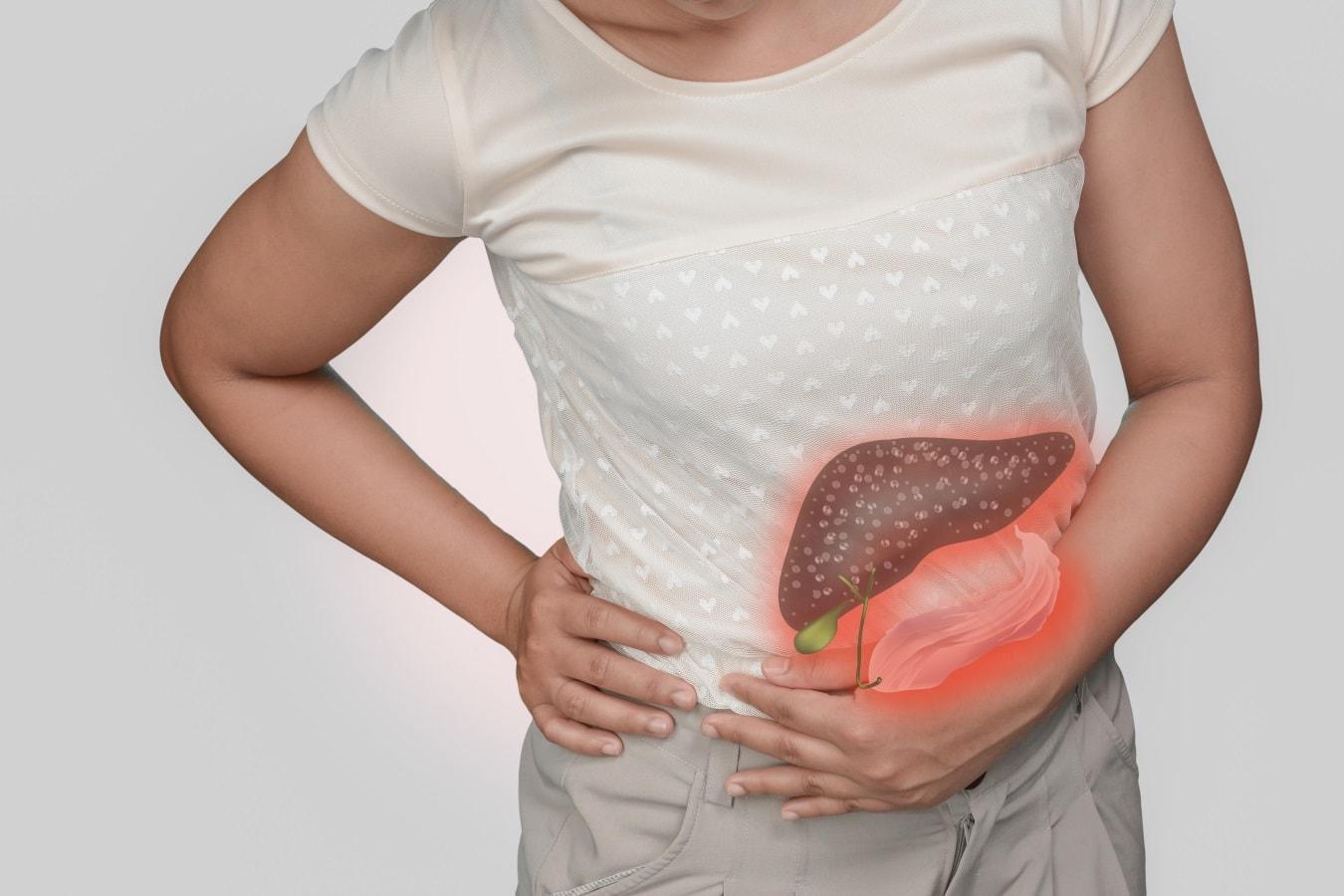 Жирная пища наносит необратимый вред печени