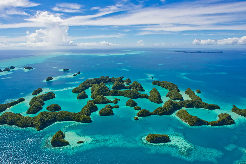 Республика Палау запретила опасные для кораллов солнцезащитные кремы
