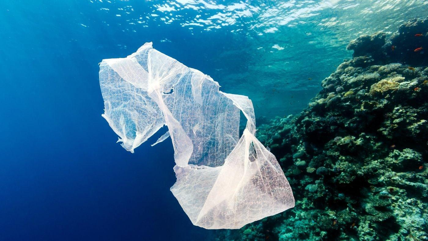 В Японии появятся пакеты, разлагающиеся в морской воде