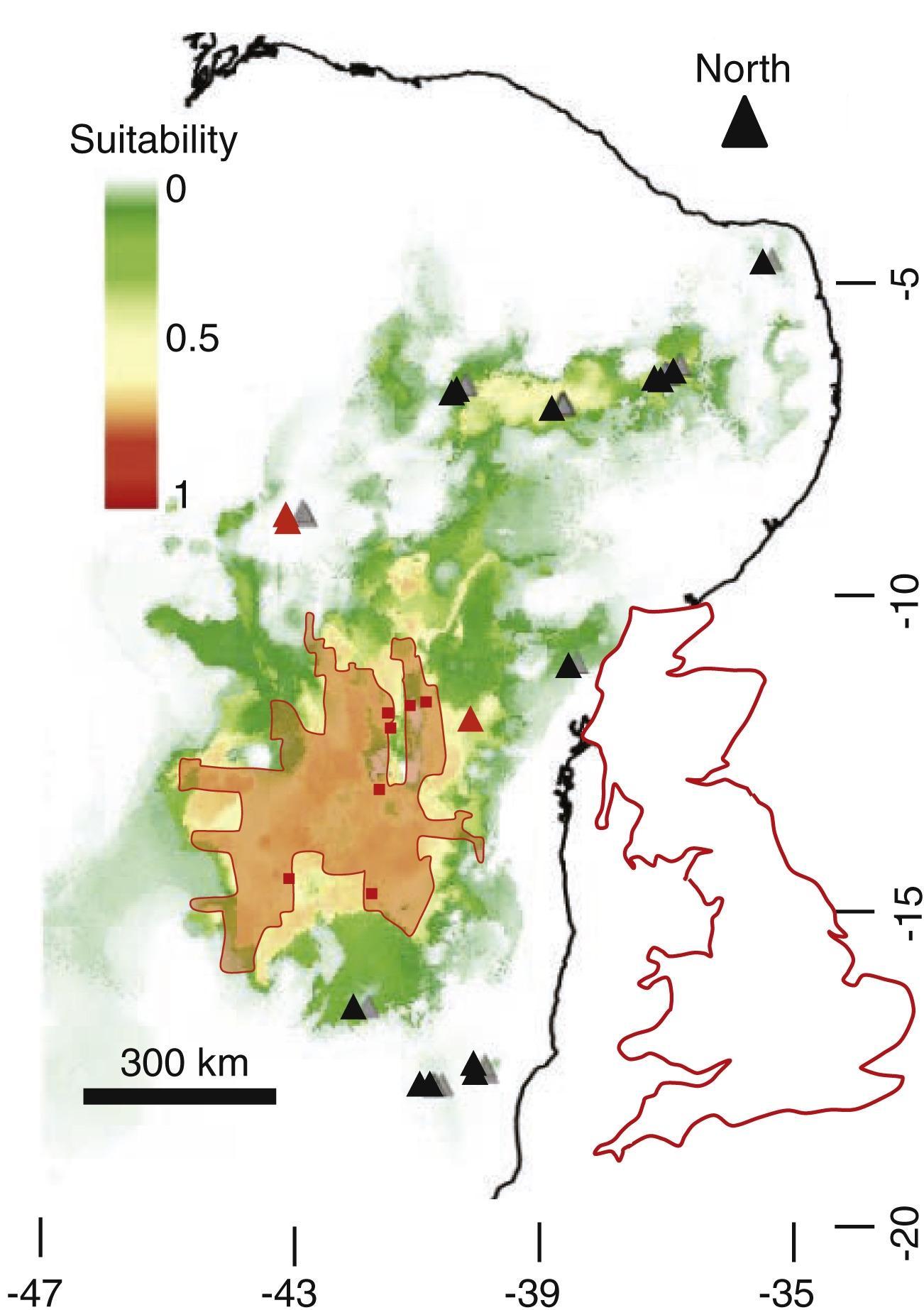В Бразилии нашли систему термитников возрастом 3800 лет и площадью с три Курганских области