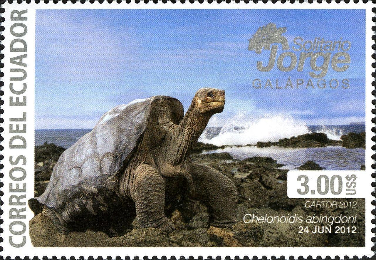 Геном Одинокого Джорджа рассказал о долгожительстве гигантских черепах