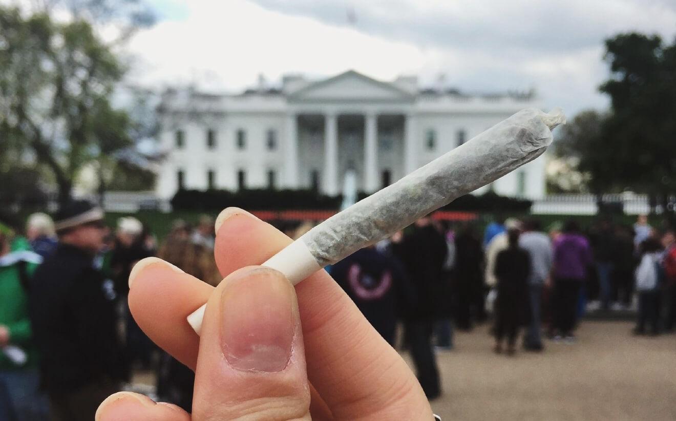 Для желающих бросить курить марихуану разработали лекарство