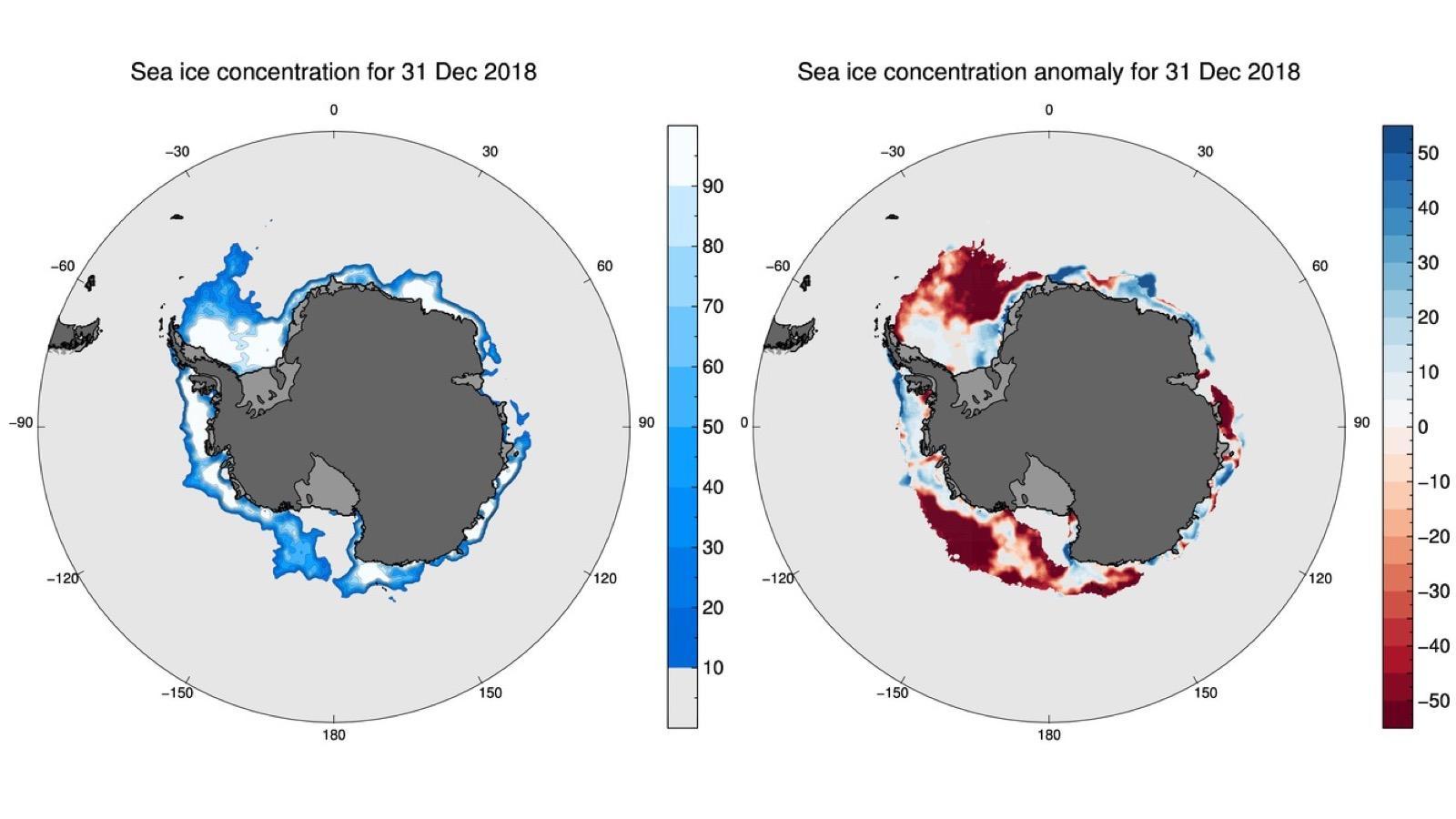 Площадь антарктического морского льда на Новый год достигла рекордного минимума