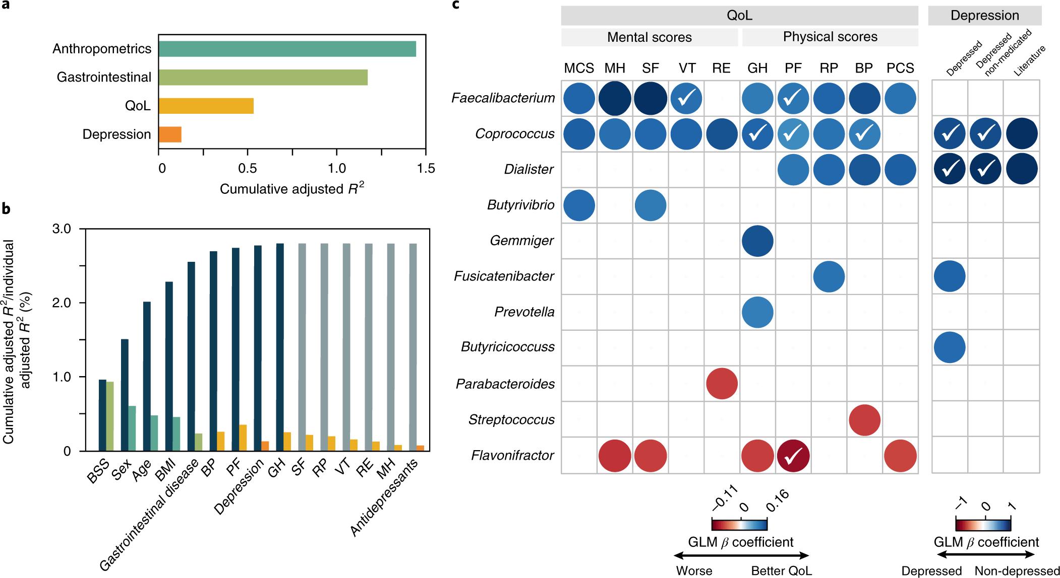 Микробиологи связали состав кишечной микрофлоры с депрессией и качеством жизни