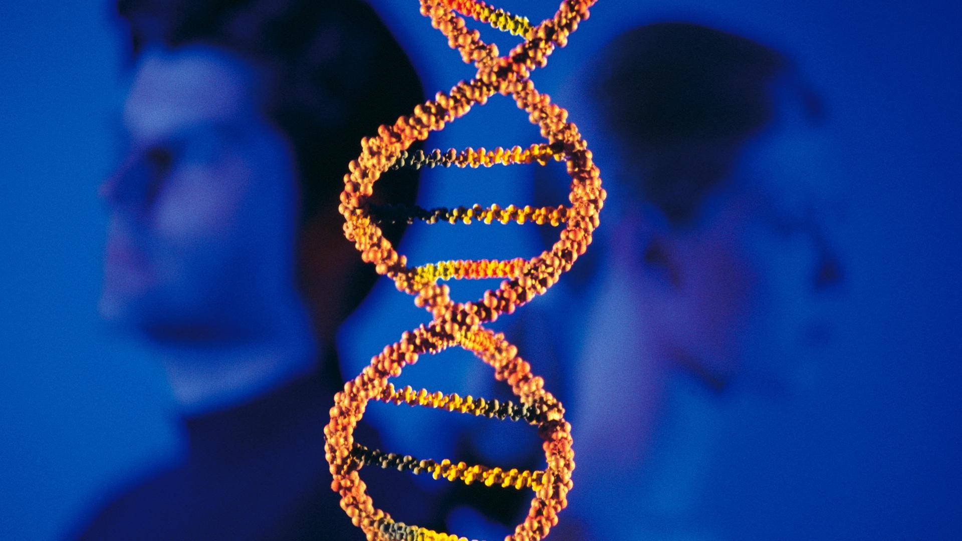 Важные отличия мамы от папы в современной генетике