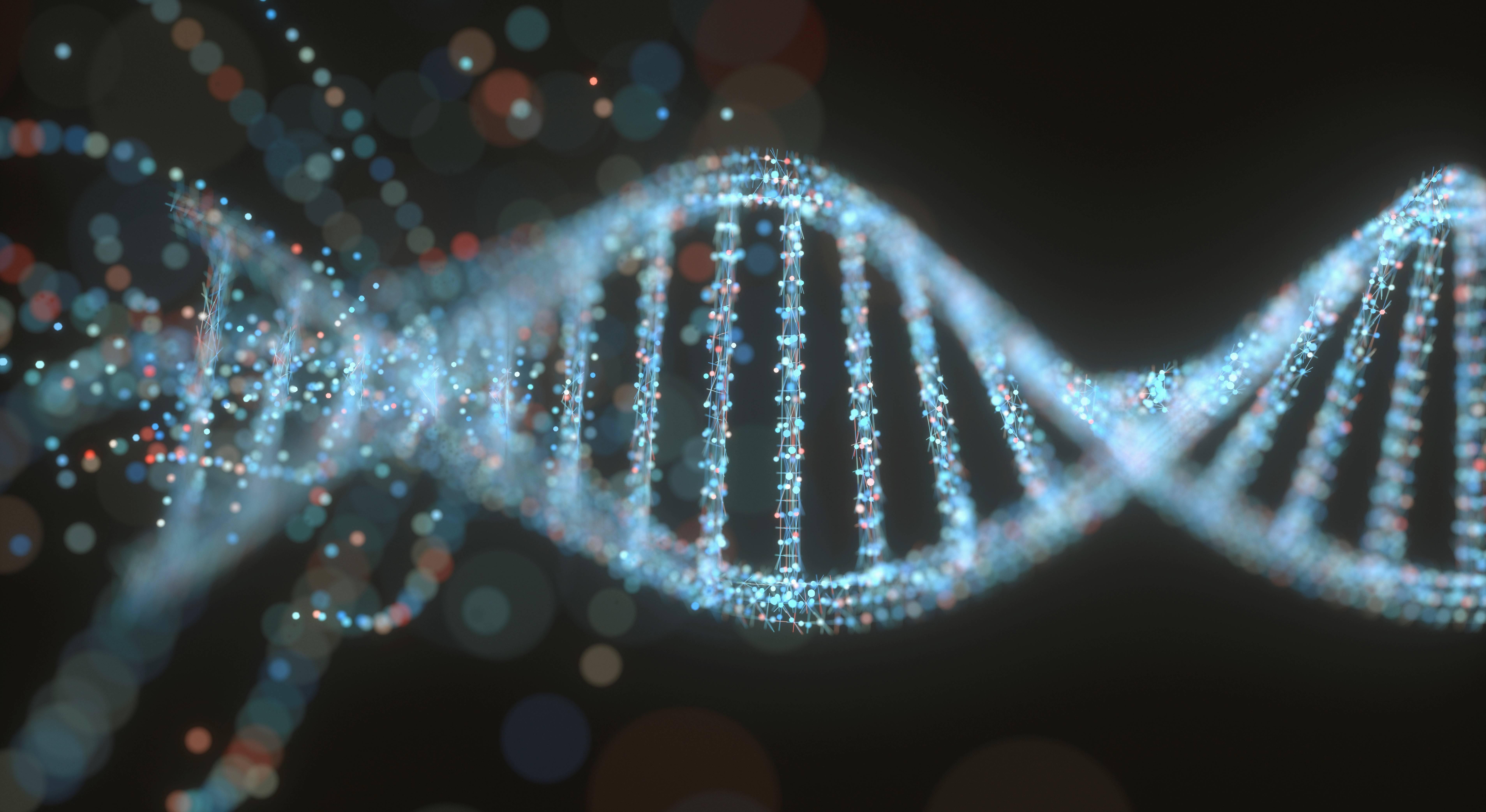 Для здоровой старости подобрали гены