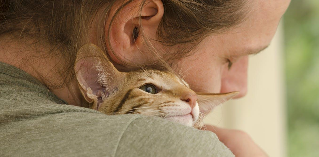 Милая агрессия: почему при виде милых животных возникает желание «задушить» их в объятиях?