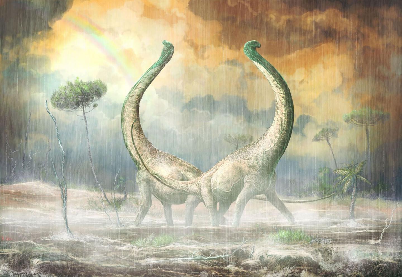 Зауропод из Мтуки рассказал о ранней эволюции титанозавров