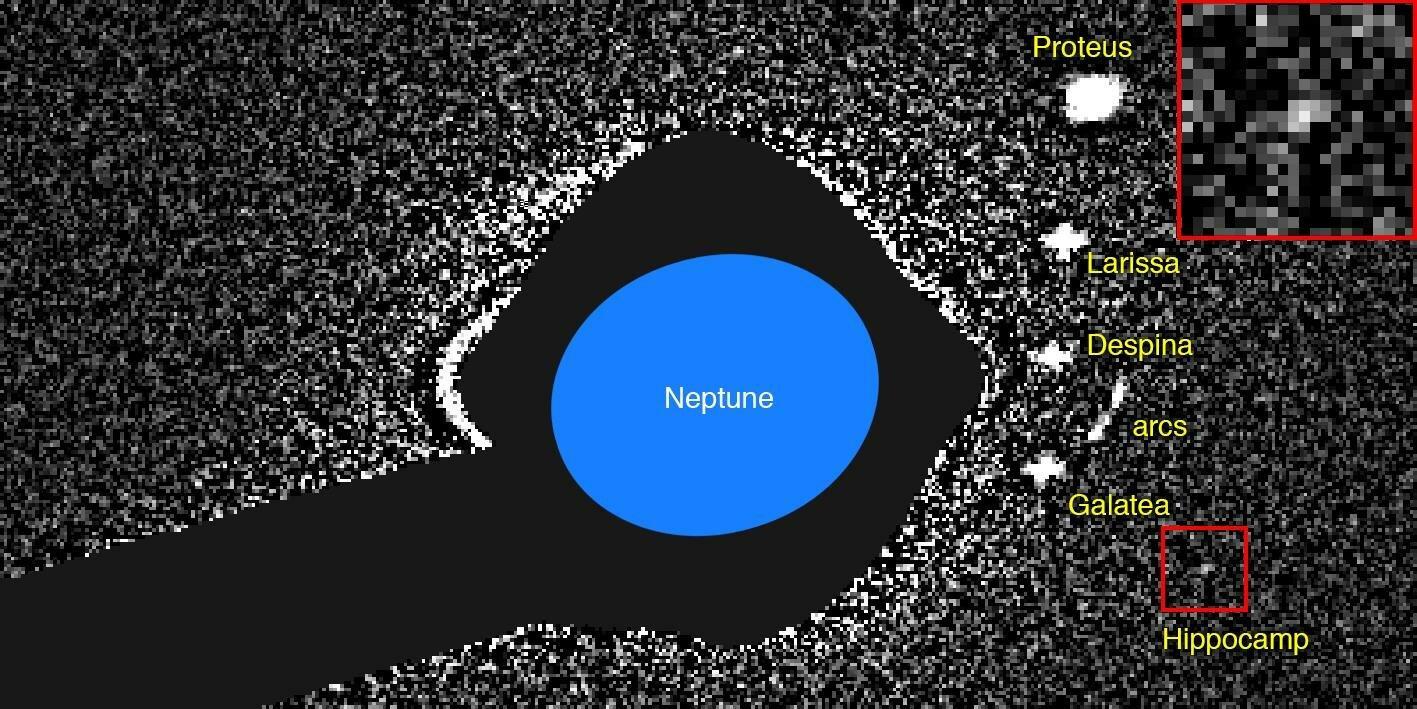 Новую луну Нептуна назвали в честь Гиппокампа