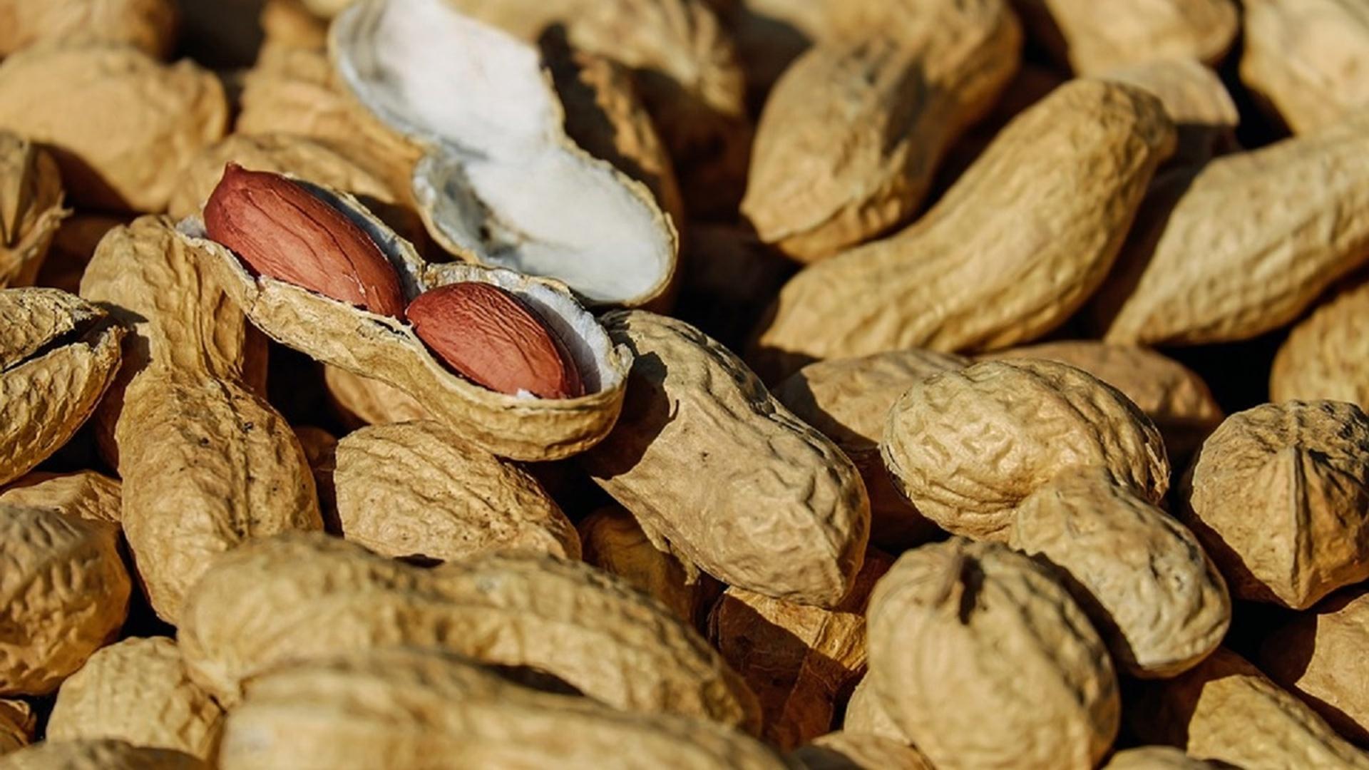 Учёные нашли способ «выключить» пищевую аллергию