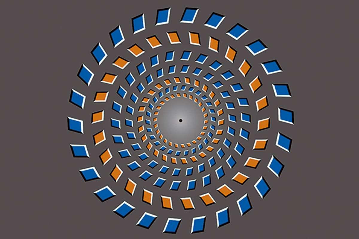Оптическая иллюзия движения вызвала «зависание» мозга