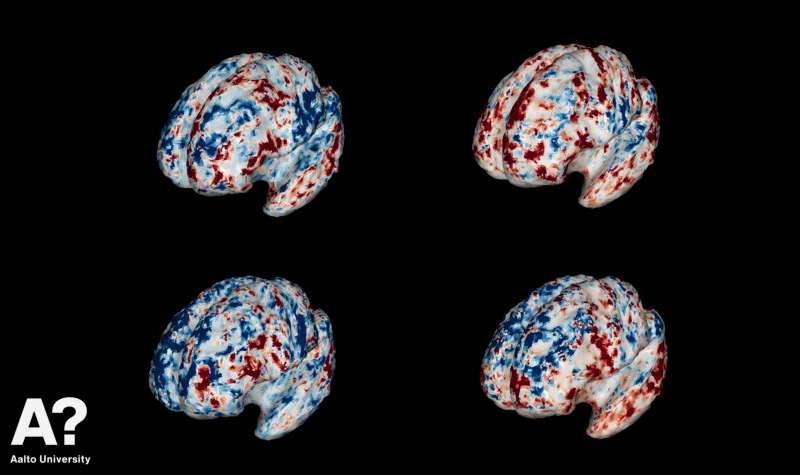 Как наш мозг из частей складывает целое?