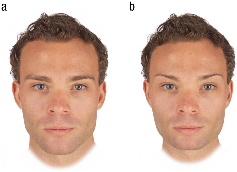 Гормоны не повлияли на привлекательность мужских лиц в глазах женщин