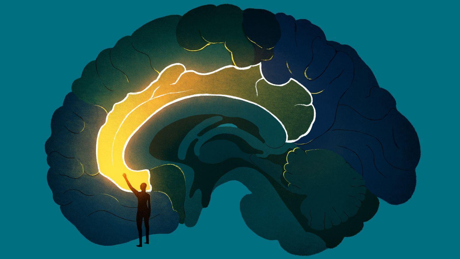 Глубокая стимуляция внутренней капсулы улучшила когнитивный контроль