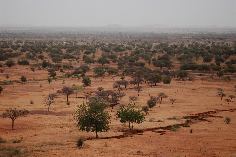 Сахель, лежащая к югу от пустыни Сахара