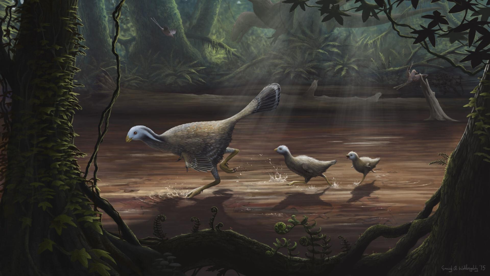 Полет динозавров мог возникнуть из быстрого бега