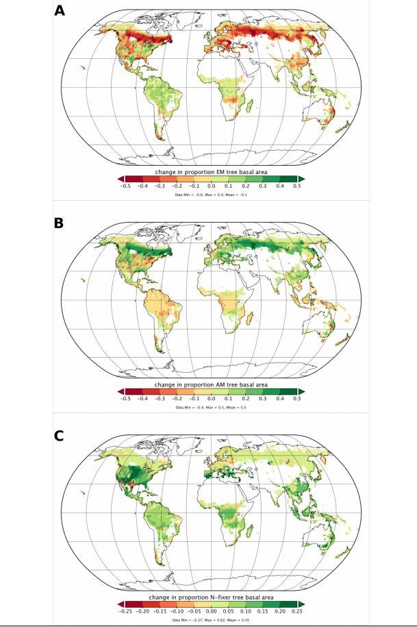 Составлена карта всех грибов на земле