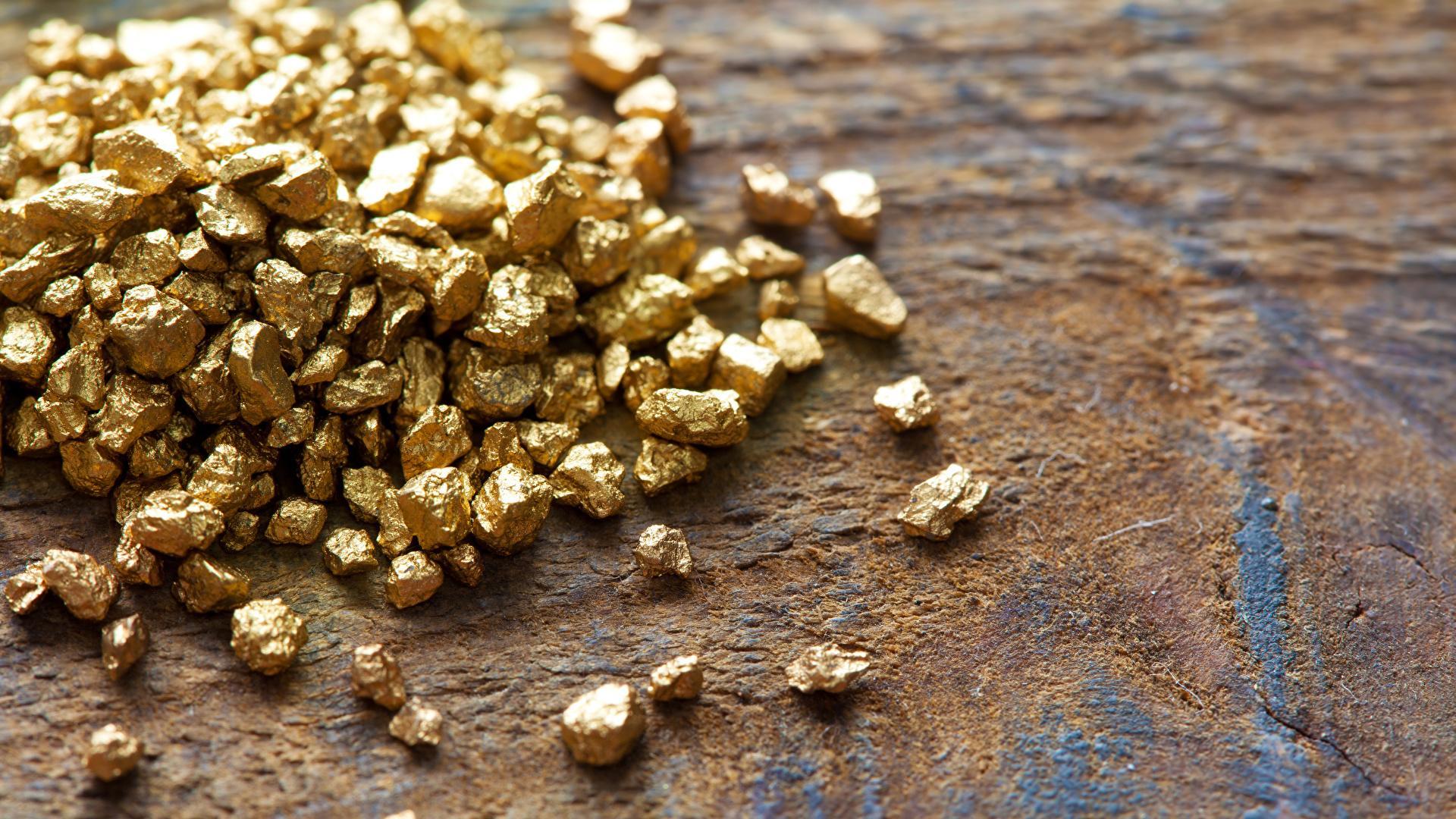 В Австралии обнаружены грибы, выделяющие золото