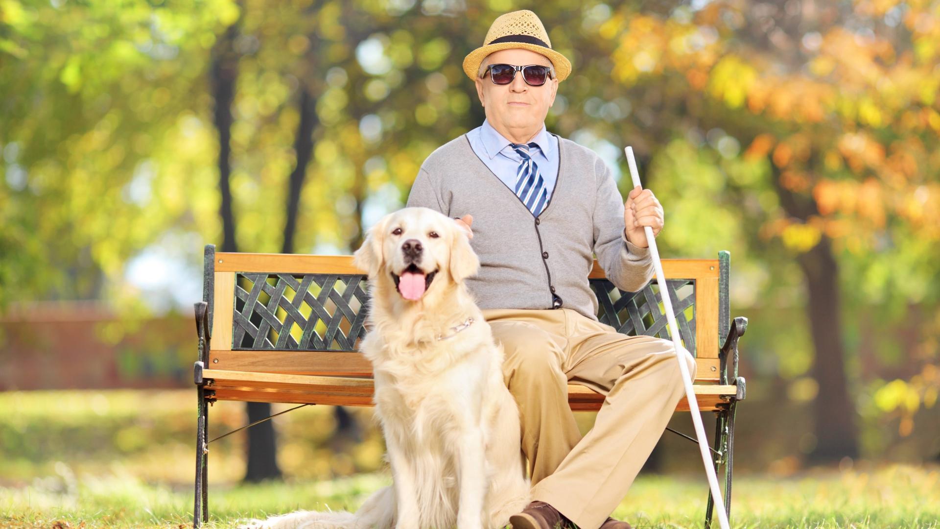 Как слепые люди узнают о внешности животных
