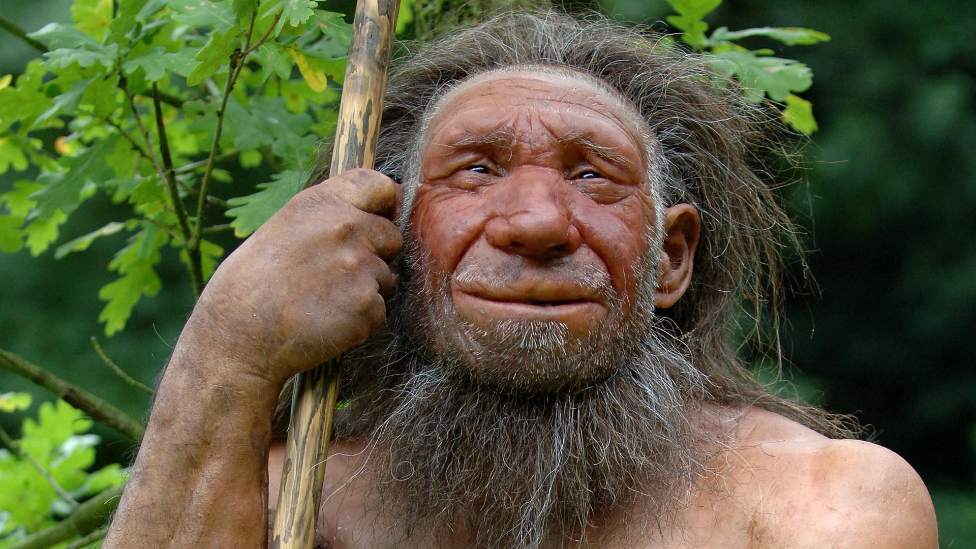 Исследователи назвали новую причину вымирания неандертальцев