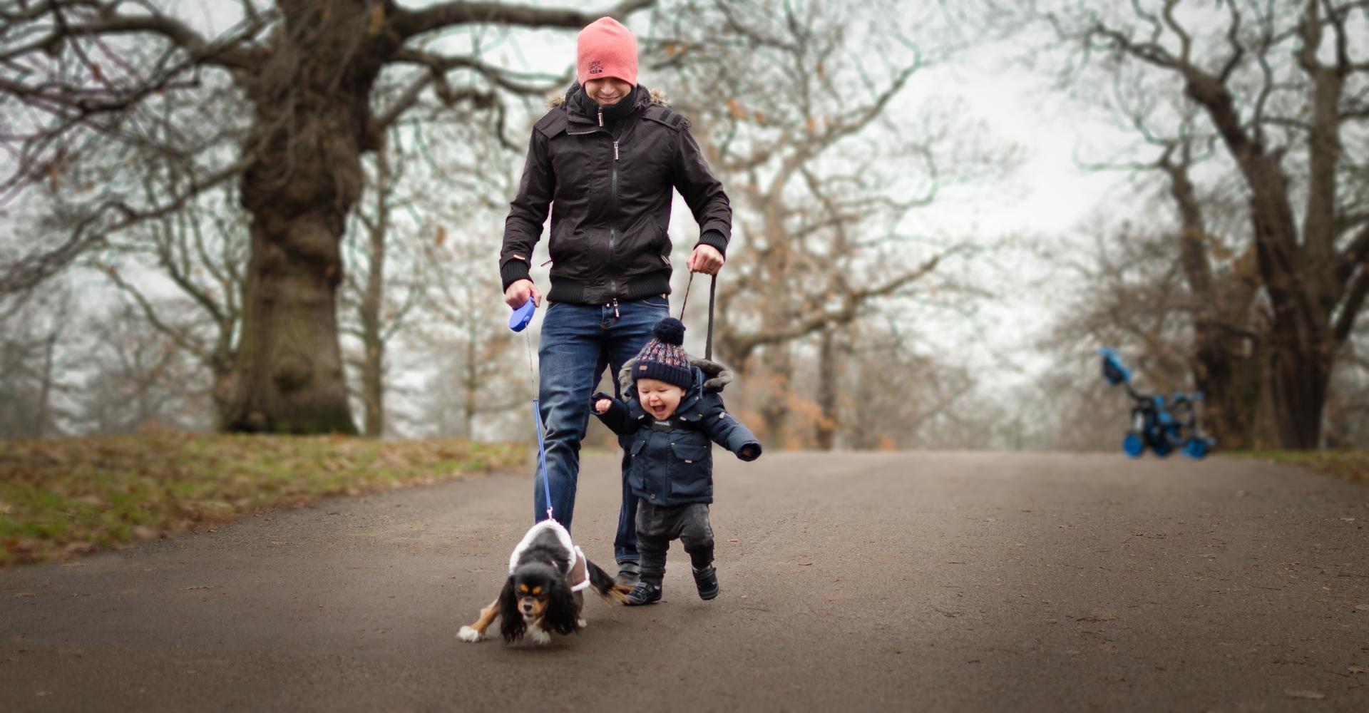 Любовь к собакам оказалась заложена в генах