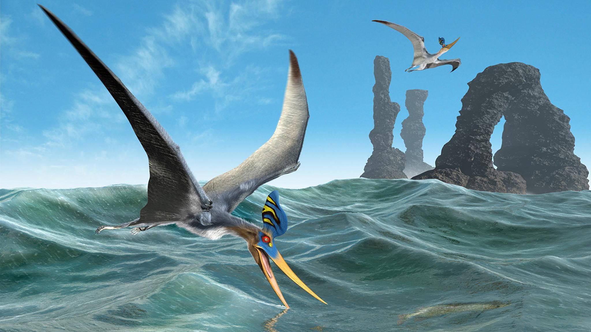 Птерозавры могли летать с рождения