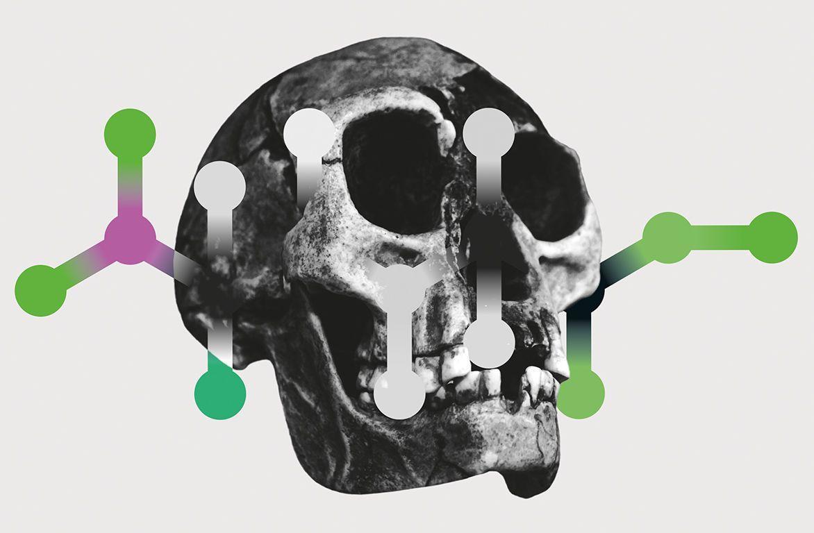 Древний белок помогает там, где бессильна палеогенетика