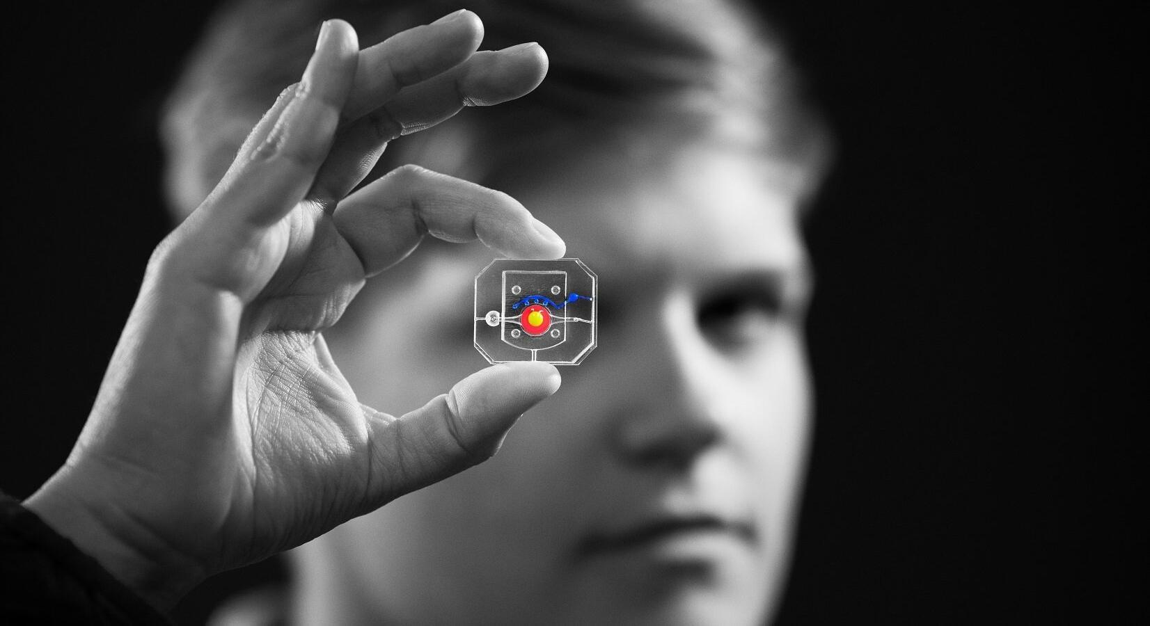 Глаз-на-чипе помог смоделировать лечение синдрома сухого глаза