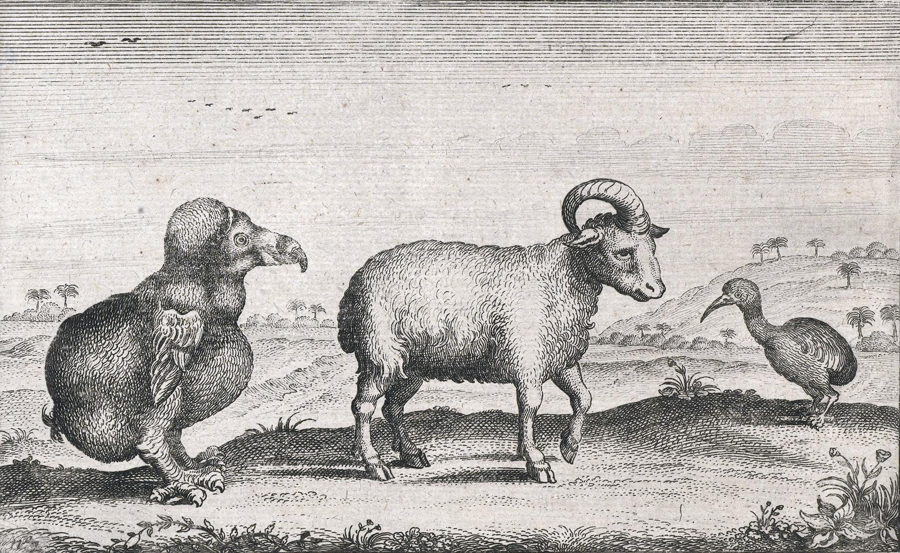 Начало конца современных животных датировали XIX веком