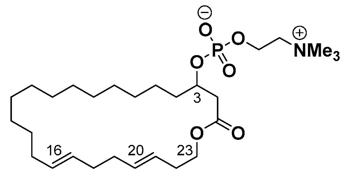 Новое противогрибковое вещество против золотистого стафилококка